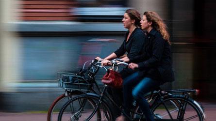 O Técnico disponibiliza bicicletas para usufruto gratuito de toda a comunidade académica.