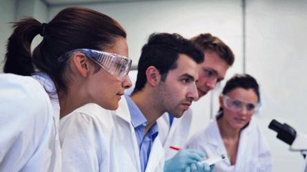 São disponibilizadas aos alunos do Técnico bolsas de investigação em diversos domínios científicos.